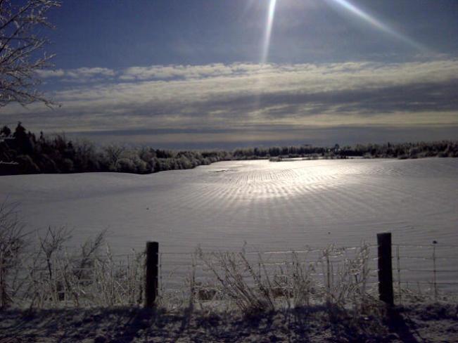 Morning Christmas Eve Townline Road Ashburn, Ontario Canada