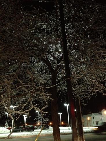 #icestorm2013 Cobourg, Ontario Canada