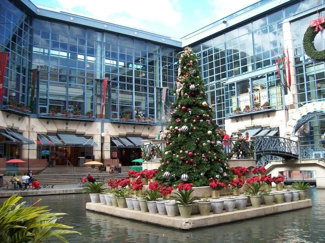 Lovely Christmas Setting San Antonio, Texas United States