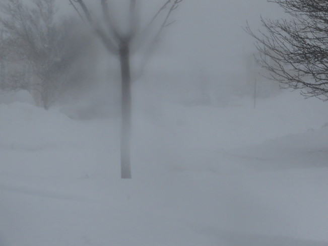A heavy snowfall Mount Pearl, Newfoundland and Labrador Canada