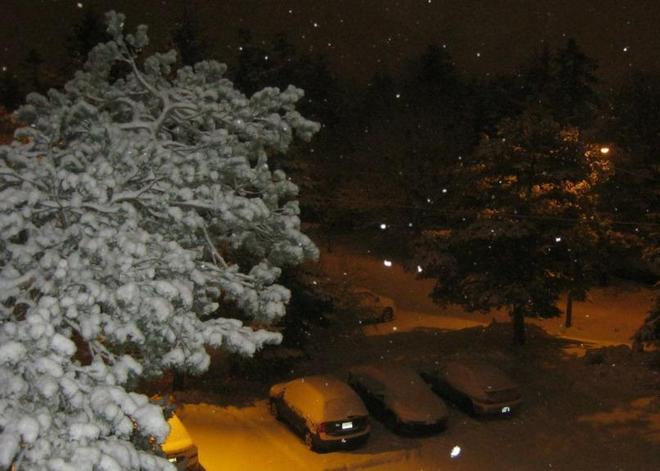 Night Snowfall Halifax, Nova Scotia Canada