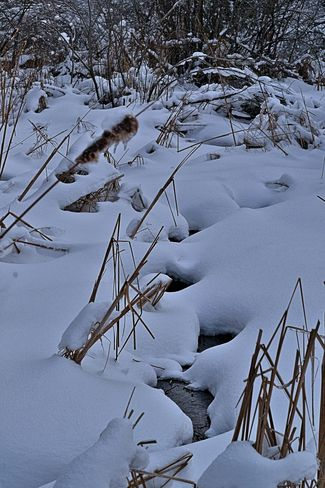 Snow-Covered Stream Goderich, Ontario Canada