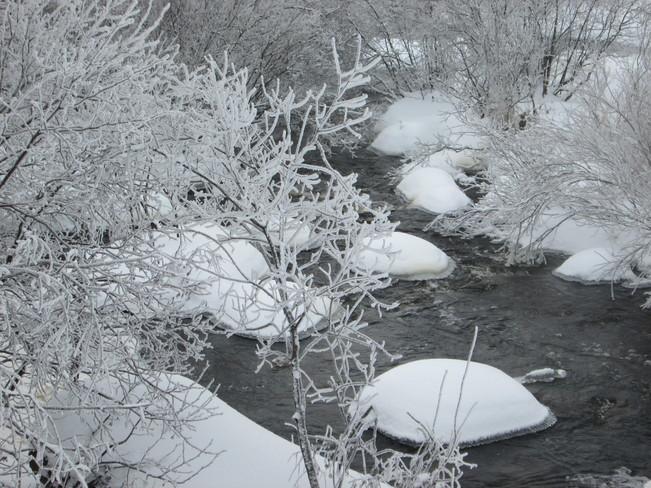 Beautiful winter Sackville, New Brunswick Canada