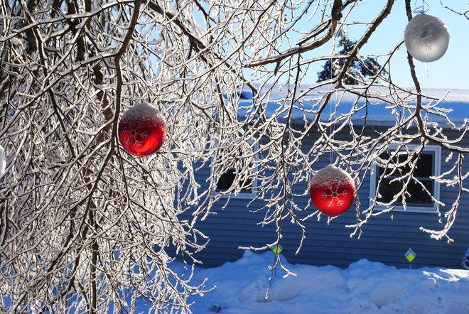 Winter Wonderland Saint John, New Brunswick Canada