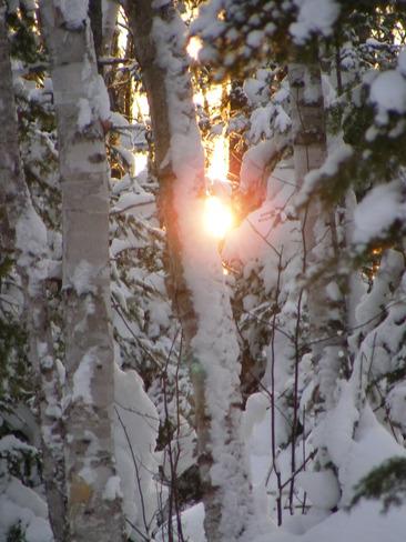 winter wonder land Petit Rocher, New Brunswick Canada