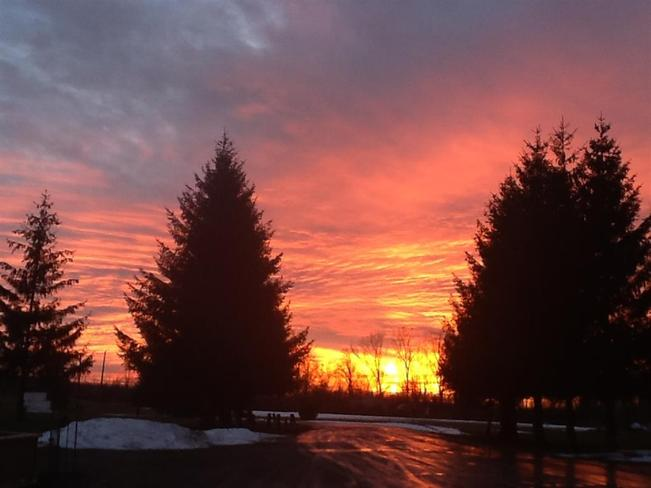 Sunset Chippawa, Ontario Canada