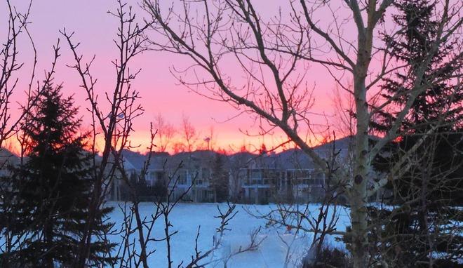 Pink but Chilly Sunrise Lethbridge, Alberta Canada