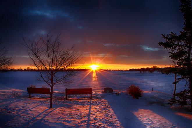 A Morning Walk In The Park. Calgary, Alberta Canada