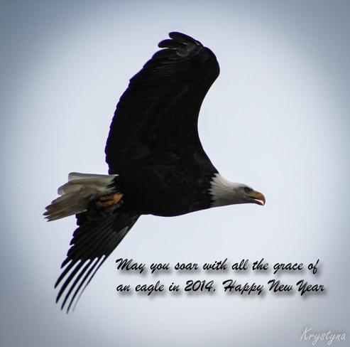 Soar Like an Eagle Mission, British Columbia Canada