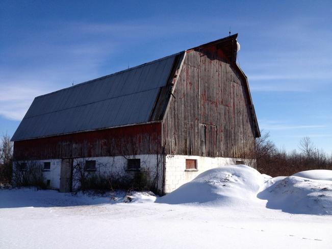 Heritage Forest Amherstburg, Ontario Canada