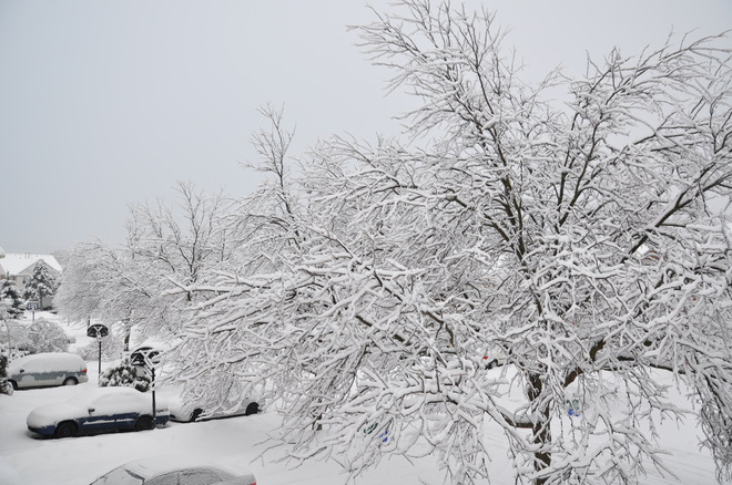 White Winter Time Richmond Hill, Ontario Canada