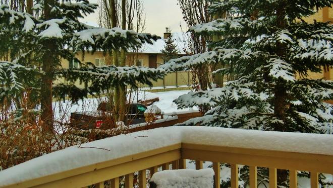 more snow on the deck Edmonton, Alberta Canada