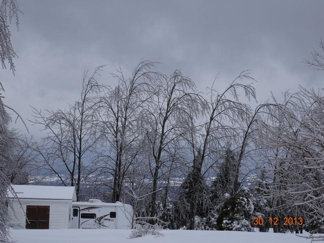 Ice Storm 2013 Kentville, Nova Scotia Canada