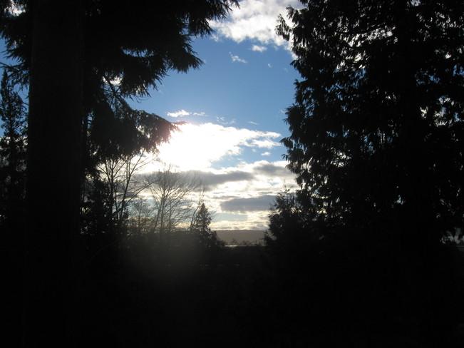 the sun is up! Surrey, British Columbia Canada