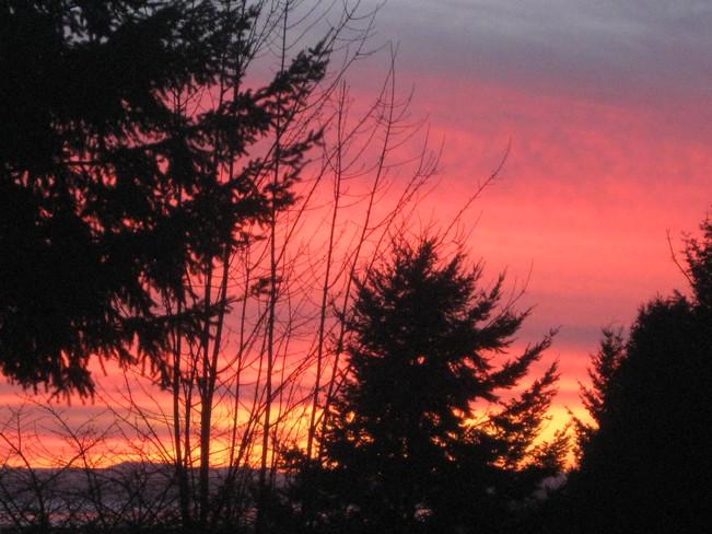 ablaze... Surrey, British Columbia Canada