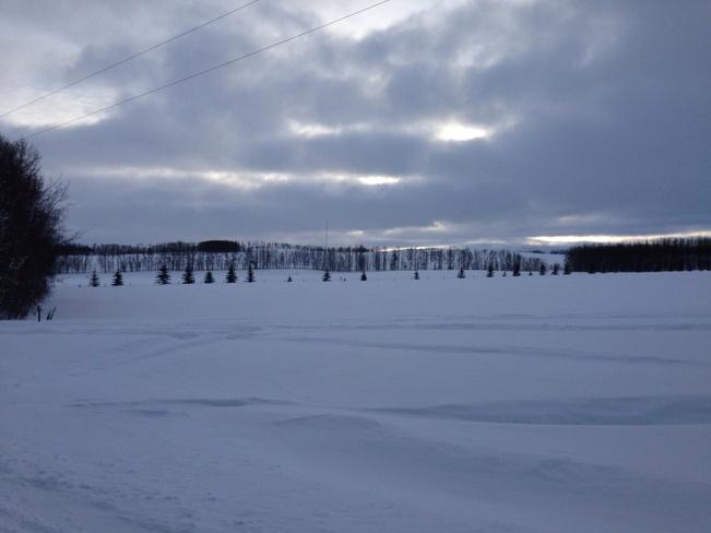 Snow ,snow and more snow! Sylvan Lake, Alberta Canada