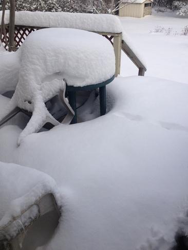 Snow Day Sutton West, Ontario Canada