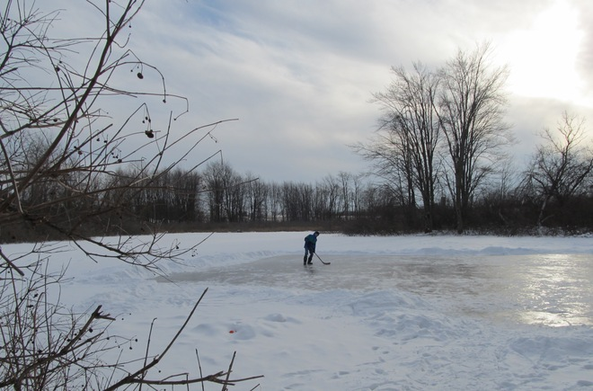 Hockey anyone? Cambridge, Ontario Canada