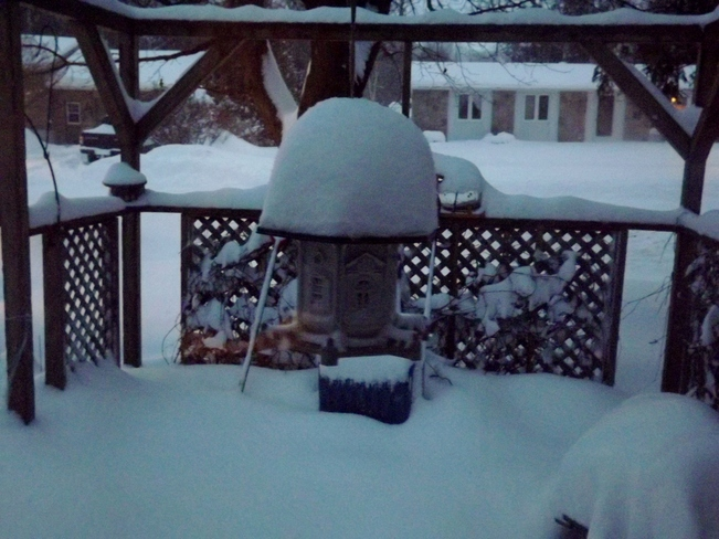 snow last night