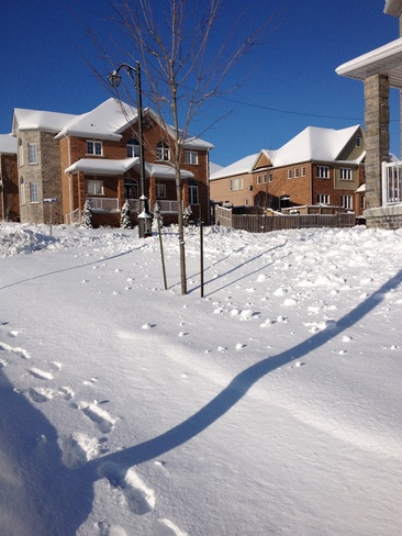 snow day near my house Newmarket, Ontario Canada