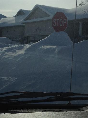 stopsign ?? Angus, Ontario Canada