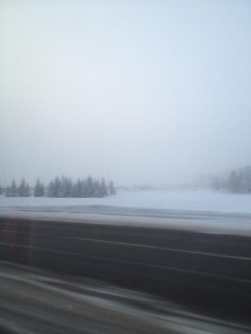 foggy day!! Regina, Saskatchewan Canada