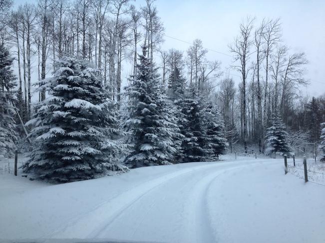 Edson in December Edson, Alberta Canada