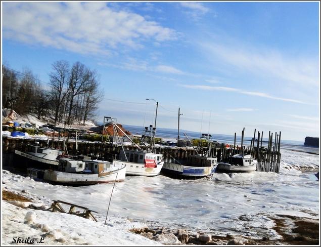 Blue Skies , Icy Minas Basin Canning, Nova Scotia Canada