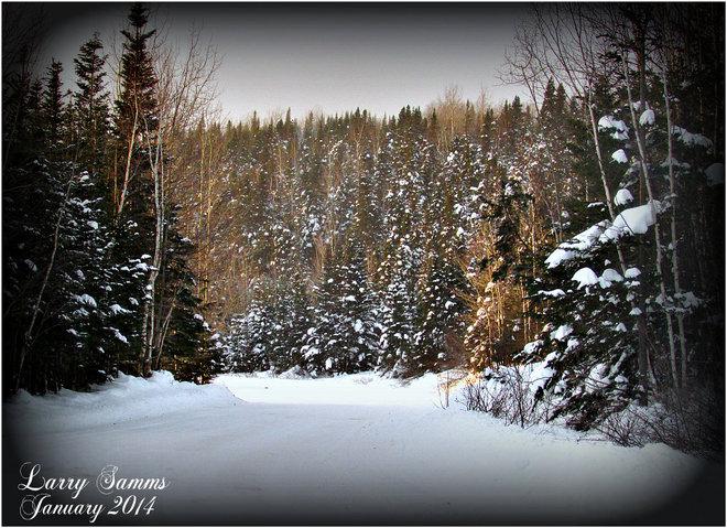 """Beautiful Cold Day"" Springdale, Newfoundland and Labrador Canada"