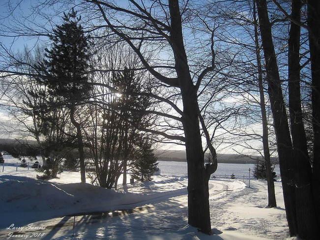 """Beautiful Morning"" Springdale, Newfoundland and Labrador Canada"