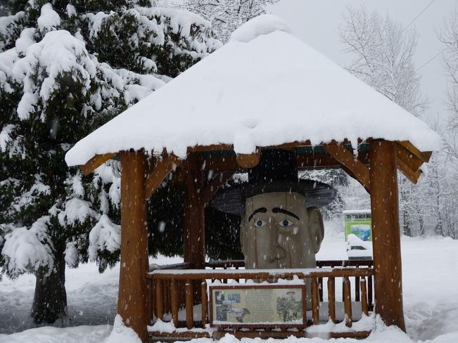 winter scene Revelstoke, British Columbia Canada
