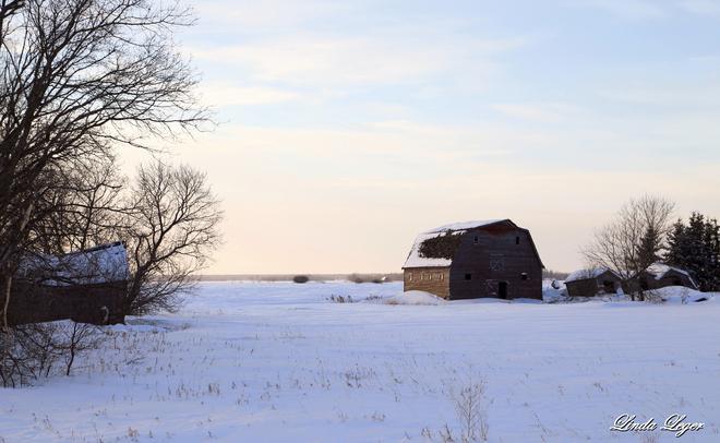 Winter Coat Dencross, Manitoba Canada