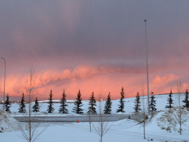 Snowy sunrise Calgary, Alberta Canada