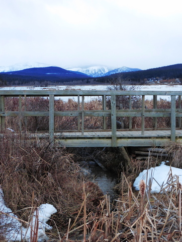 WATER UNDER THE BRIDGE Cranbrook, British Columbia Canada