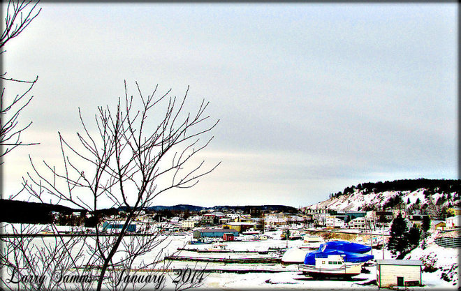 """Springdale Waterfront"" Springdale, Newfoundland and Labrador Canada"