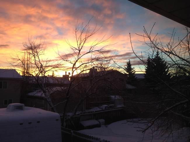Pink skies 2 Calgary, Alberta Canada