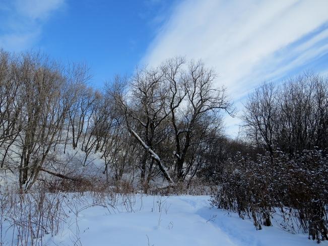 Blue sky Winnipeg, Manitoba Canada