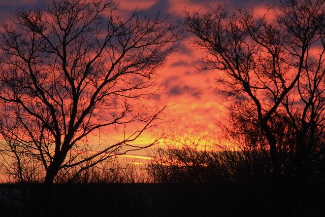 Tuesday Sunrise Dalmeny, Saskatchewan Canada