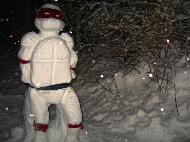 Snow Raphael Québec, Quebec Canada