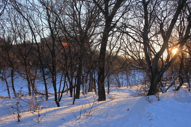 Late Afternoon Sunshine Winnipeg, Manitoba Canada