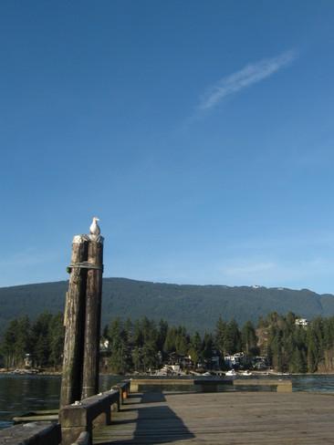 Sunny and Warm Belcarra, British Columbia Canada