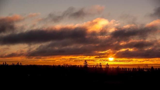 Morning sun Huntley, Prince Edward Island Canada