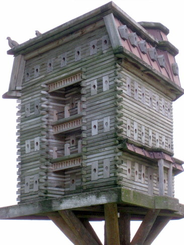Exreme Birdhouses Belgrave, Ontario Canada