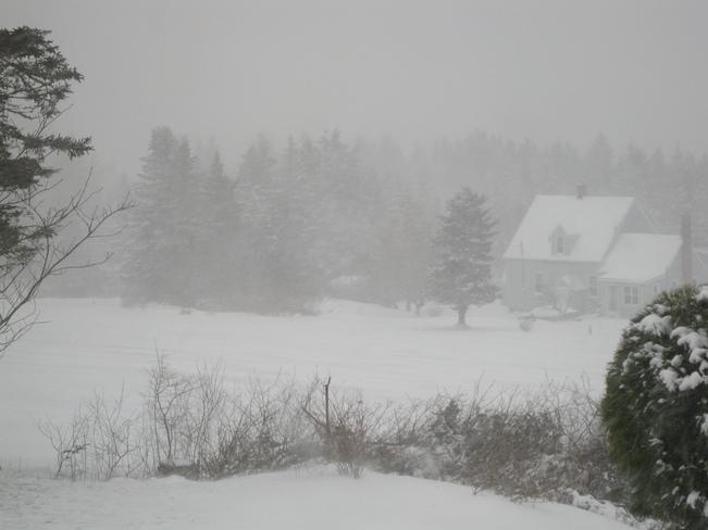 Snow West Chezzetcook, Nova Scotia Canada