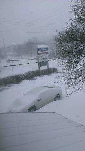 Winter Storm Port Hope, Ontario Canada