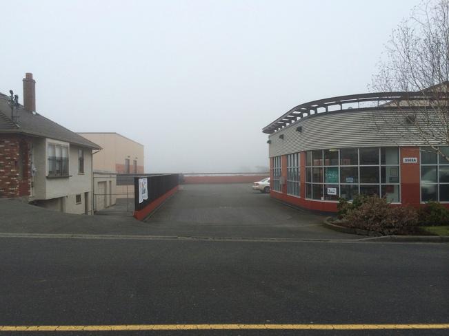 fogs rolling in Victoria, British Columbia Canada