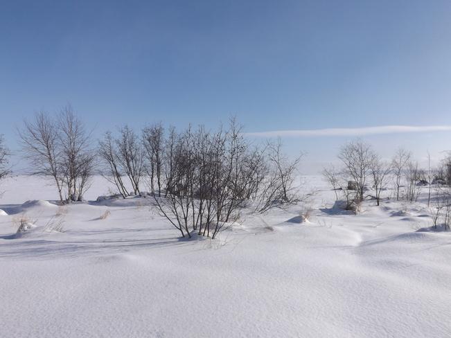 SO FAR 2 MONTHS of WINTERS WRATH Thunder Bay, Ontario Canada