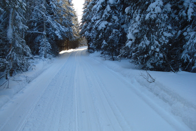 Wawa after snow storm Wawa, Ontario Canada
