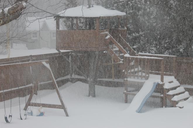 Saturdays wind and snow! Kingston, Ontario Canada