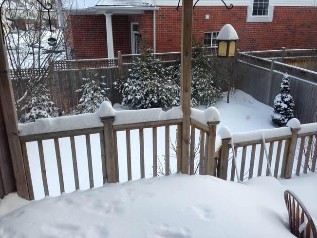 snow snow snow Waterloo, Ontario Canada